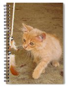 Play Time With Kitty Spiral Notebook