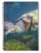 Playful Green Sea Turtle Spiral Notebook