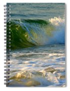 Playful Surf Spiral Notebook