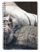 Playful Tiger Spiral Notebook