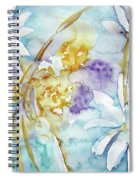 Playfulness Spiral Notebook