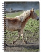 Playtime Is Over  2534 Spiral Notebook