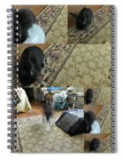 Playtime With Bunny Spiral Notebook