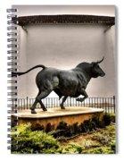 Plaza De Toros - Ronda Spiral Notebook