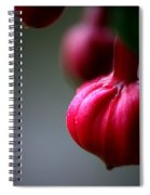 Pleasant... Spiral Notebook