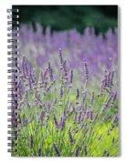 Pleasant Dreams Spiral Notebook