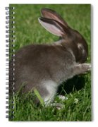 Please Carrots For Dinner Spiral Notebook