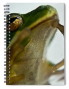 Please Not In A Frogs Eye Spiral Notebook