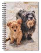 Please Take Me Home Spiral Notebook