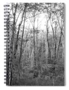 Pleasure Of Pathless Woods Bw Spiral Notebook