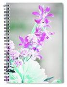Pleasure Spiral Notebook