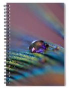 Plum Heart Spiral Notebook