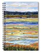 Plum Island Salt Marsh Spiral Notebook