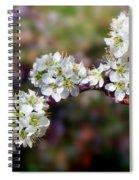 Plum Tree Blossoms Spiral Notebook