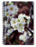 Plum Tree Blossoms II Spiral Notebook
