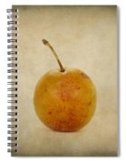 Plum Vintage Look Spiral Notebook