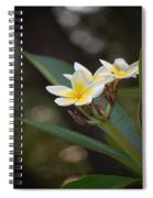 Plumeria II Spiral Notebook