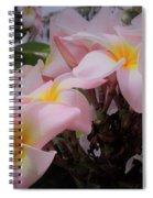 Plumeria In Pink 4 Spiral Notebook
