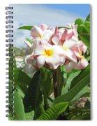 Plumeria In Pink Spiral Notebook