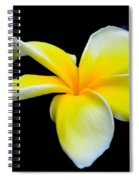 Plumeria In Yellow Spiral Notebook