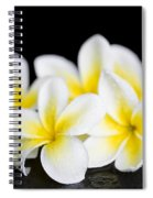 Plumeria Obtusa Singapore White Spiral Notebook