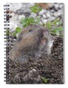 Pocket Pal Spiral Notebook