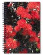 Pohutukawalicious Spiral Notebook