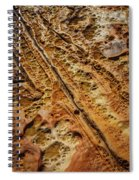 Point Lobos Abstract 106 Spiral Notebook