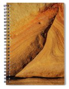 Point Lobos Abstract 108 Spiral Notebook