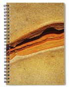 Point Lobos Abstract 111 Spiral Notebook
