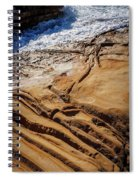 Point Lobos Abstract Spiral Notebook