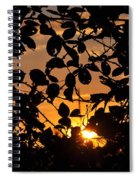 Pointed Shadow Spiral Notebook