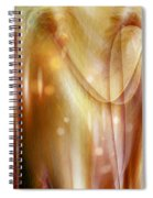 Points Of Light Spiral Notebook
