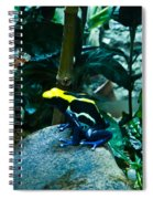 Poison Dart Frog Poised For Leap Spiral Notebook