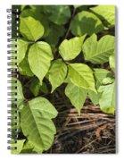 Poison Oak Vine - Toxicodendron Spiral Notebook