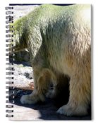 Polar Bear 2 Spiral Notebook