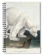 Polar Bear Spiral Notebook