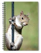 Pole Dancer 283 Spiral Notebook