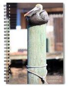 Pole Top Pelican Spiral Notebook