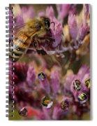 Pollen Bees Spiral Notebook