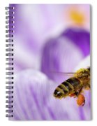 Pollen Collector Spiral Notebook