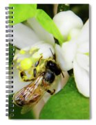 Pollen - Covered - Bee Spiral Notebook