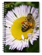 Pollen Harvest Spiral Notebook