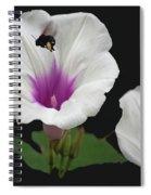 Pollen Overload Spiral Notebook