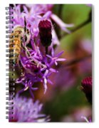 Pollen Powdered Bee Spiral Notebook