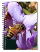 Pollinating 2 Spiral Notebook