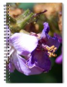 Pollinating 3 Spiral Notebook