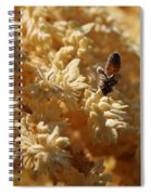 Pollinating Bee Spiral Notebook