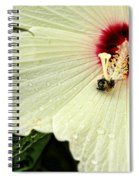 Pollinator Spiral Notebook