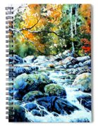 Polliwog Clearing Spiral Notebook